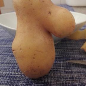 Patata nasona